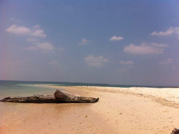 Island in the Sun /via @uwiebalfas