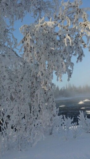 Cool Frost