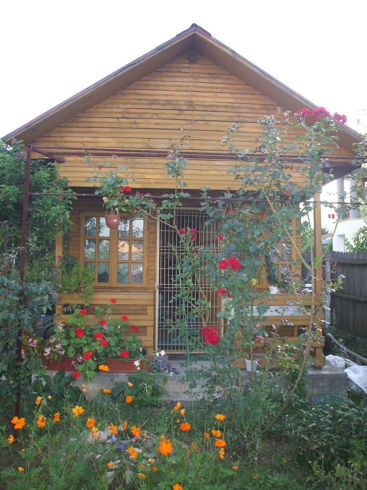 My secret garden! :)