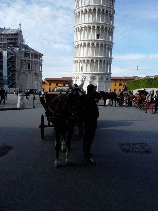 So close to the Leaning Tower... #pisa #weekend #horsecarriage