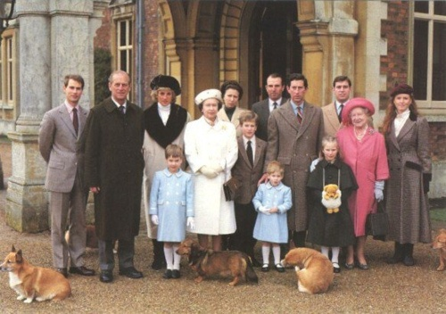 The Royal Family. From L -T: Prince Edward, Prince Philip, Princess Diana, Prince William, Queen Elizabeth, Princess Anne, Peter Phillips, Mark Phillips, Prince Harry, Prince Charles, Zara Phillips, The Queen Mother, Prince Andrew and Sarah, Duchess of York.