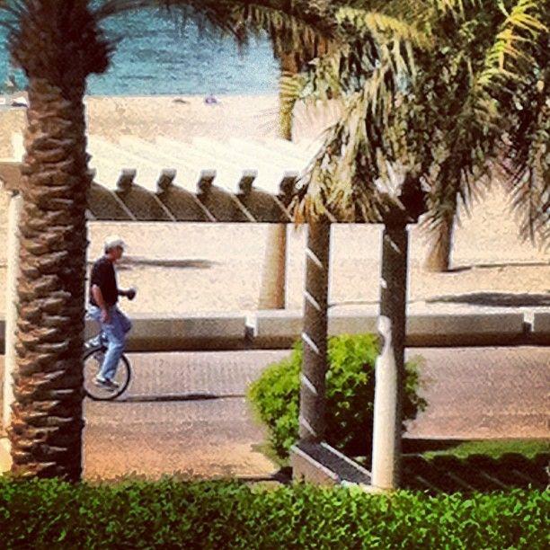The Marina Crescent | Kuwait