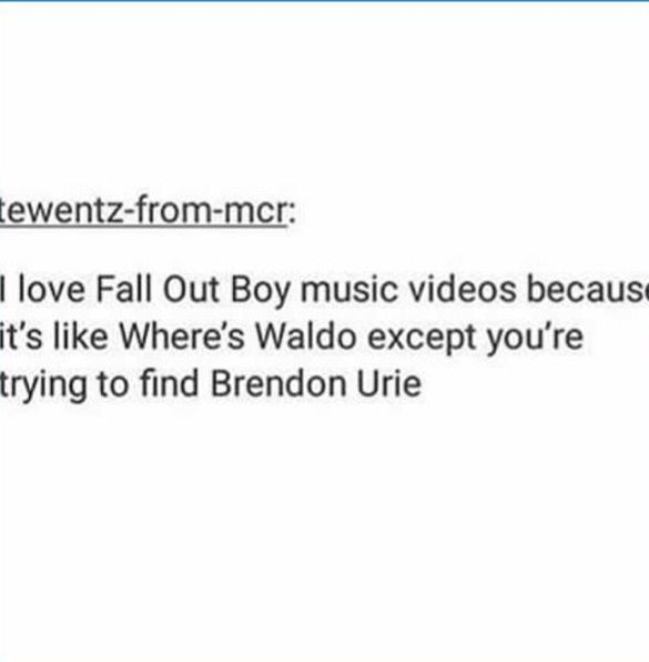 EXACTLY like am I the only one who saw panic! at the disco in what a catch Donnie music vid<<<I only saw Brendon but maybe I'm blind<<it was brendon and spencer (: