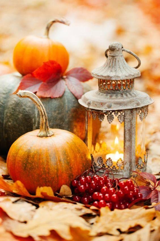 "'The Season Of Thanksgivng."""