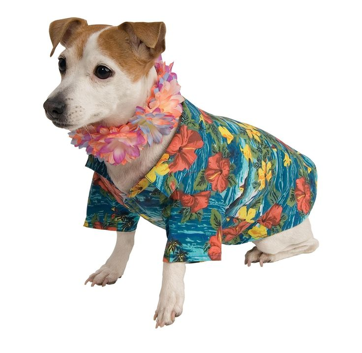 Pet Luau Costume Medium