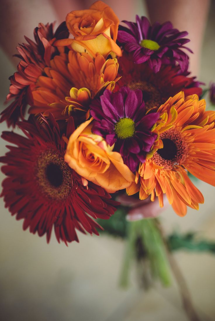 Gorgeous Fall Colored Gerber Daisy's & Roses  ‪#‎bride‬ ‪#‎wedding‬ #flowers www.planningyourweddingforless.com