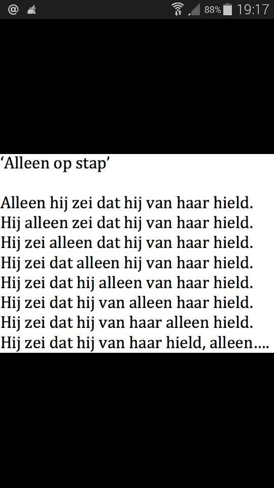 Het onmogelijke en mogelijke van de Nederlandse taal.