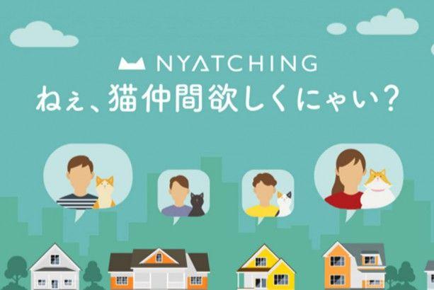 殺処分ゼロへ 猫のためのマッチングサービス Nyatching が目指す世界 Forbes Japan フォーブス ジャパン 猫 猫の誕生日 殺処分