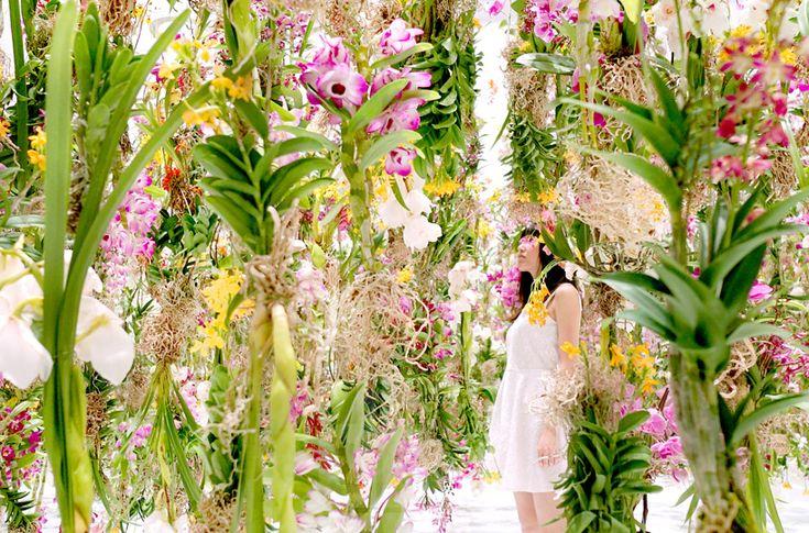 Floating Flower Garden   Teamlab for Miraikan museum Tokyo