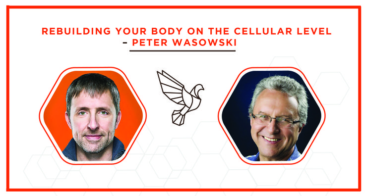 Rebuilding your body on the cellular level is no longer science fiction.