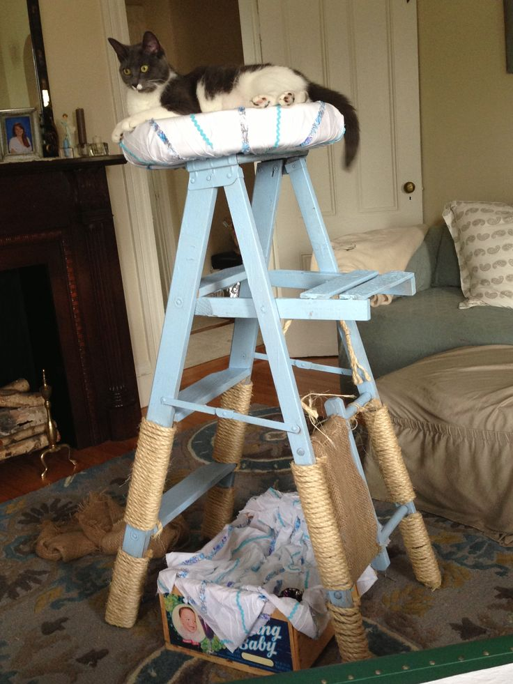 Cat Perch Made From An Old Ladder I Think She Likes It