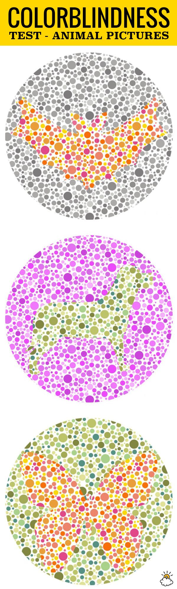 Book for color blindness - How Color Blind Are You This Test Reveals The Truth