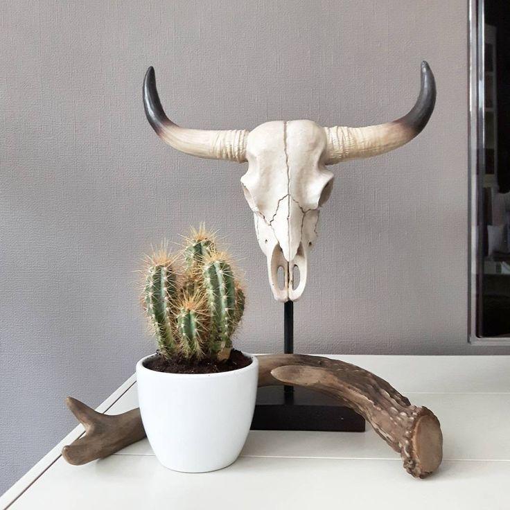 #kwantum repin: Decoratie schedel (binnenkort ook online!) @jassie_at_home…