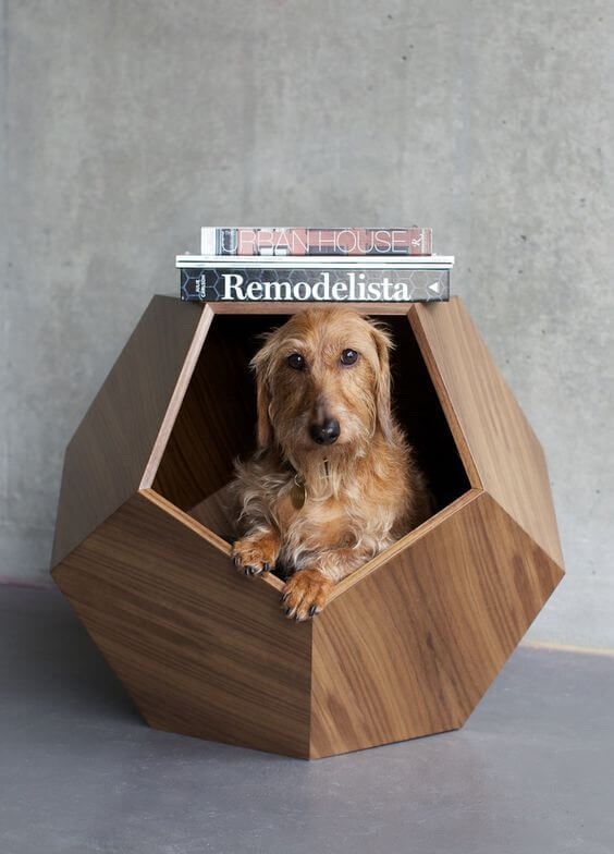 Lovely designs for dogs and cats! A German blog post. design-fuer-hunde-und-katzen-stylish-dogbed-design-pets-Pup-and-kit-www.decohome.de