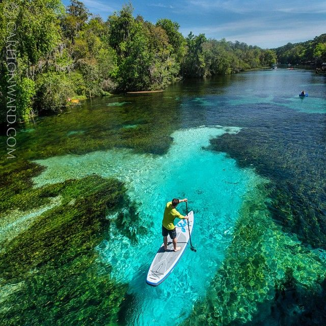 Here Joe Guthrie paddles  an inflatable stand up Paddleboard down the Rainbow River through Rainbow River State Park, FL