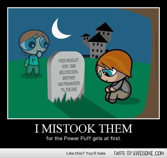 Power Puff Girl Quotes: I Didnt Mistake Them For The Power Puff Girls