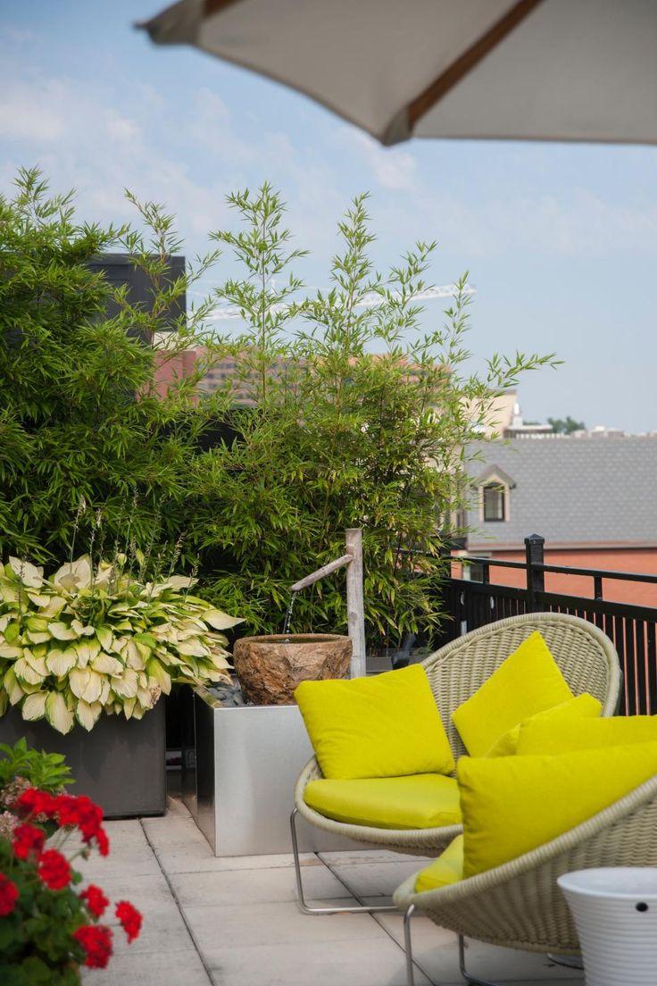 28 Best Roof Garden Design Images On Pinterest Roof