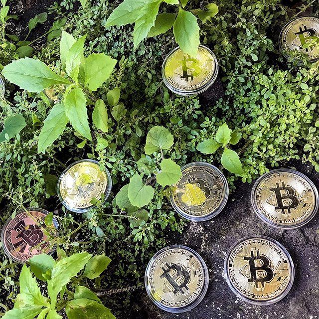 Bitcoins Paversti Realiais Pinigais