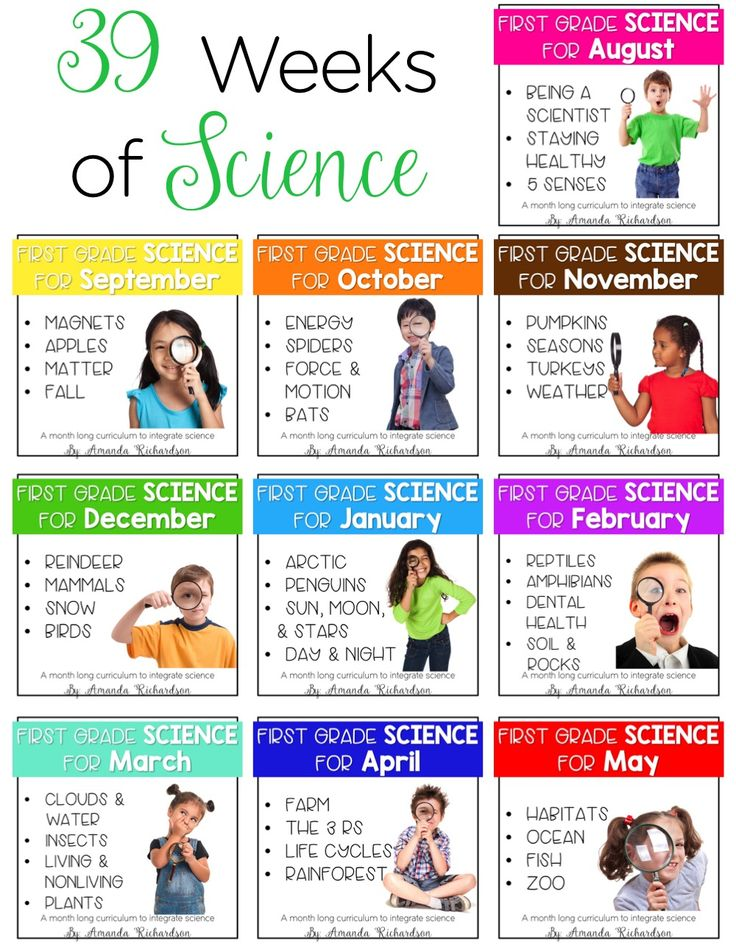 Science for first grade is all about creating hands-on engaging experiences for them! From health, to magnets, to spiders, to weather, to mammals, to objects in the sky and life cycles galore, there is simply so much to explore! Be set with these science for first grade lesson plans and activities for the ENTIRE YEAR!!