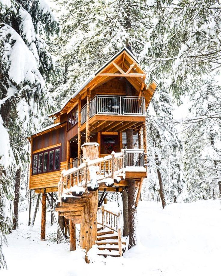Luxury Tree House Plans: Best 25+ Luxury Tree Houses Ideas On Pinterest