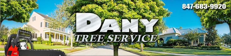 Tree trimming service, tree service, tree service company, local tree trimming company, tree trimming companies, tree services, local tree services, tree trimming,tree care,tree care services,local tree care services, tree pruning, tree pruning services, tree removal, tree removal services,tree experts,stump grinder, stump grinding, tree cutting services, tree cutting