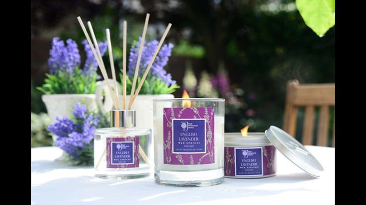 RHS English lavender candles available in store.