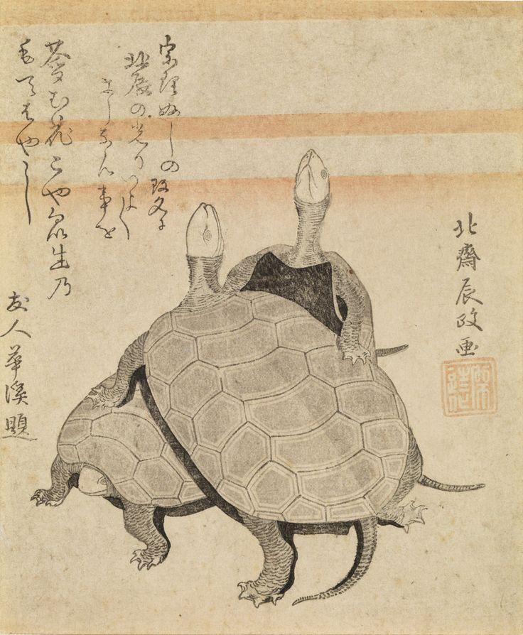 9 Key Terms You Should Know Before Seeing The Massive Hokusai Exhibition Tortues Kame zu Ère Kansei, an X (1798) Surimono 18,5 × 15,5 cm Signature : Hokusai Tokimasa ga Sceau : Shizōka Japon, collection particulière