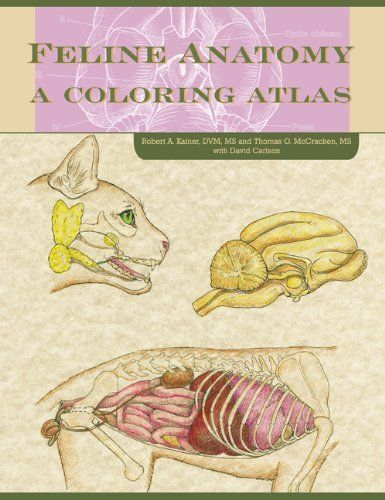 cat breeders cat show judges as well as student of veterinary medicine zoology and wildlife biology will greatly benefit from this feline anatomy coloring - Veterinary Anatomy Coloring Book