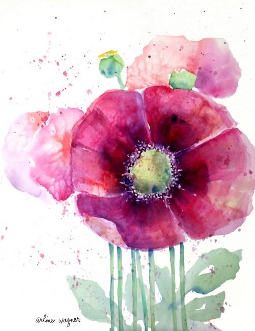 Pink Poppies by Arline Wagner (watercolor) Print available for purchase ---*--- Love the transparent look to this painting.