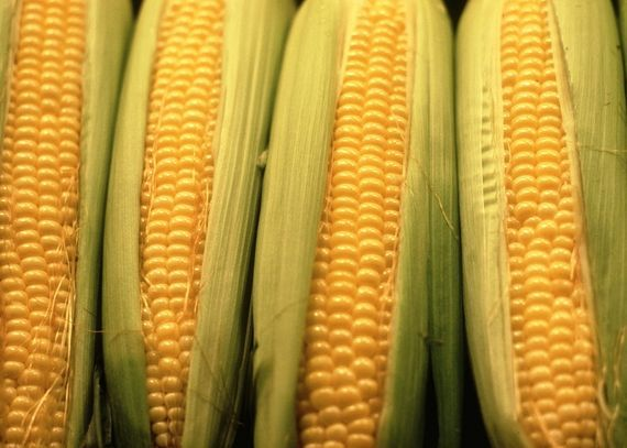 How to plant, harvest, and grow sweet, delicious corn to use in soups and salads.