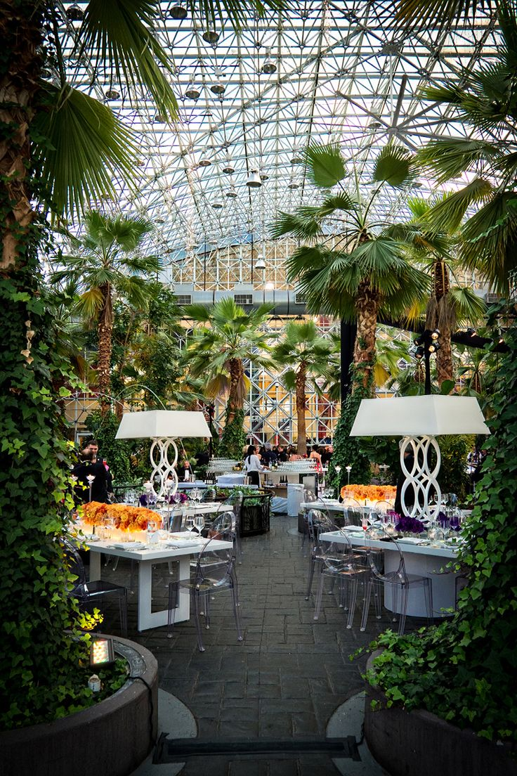 The Crystal Gardens is a beautiful indoor, one‐acre, botanical garden. This six‐story glass atrium with a 50-foot arched ceiling holds over 80 live palm trees, lush foliage, hanging twinkle lights and dancing leapfrog fountains. The Crystal Gardens, offering beautiful views of the lakefront, Chicago skyline and Navy Pier Ferris Wheel, is located just steps from …