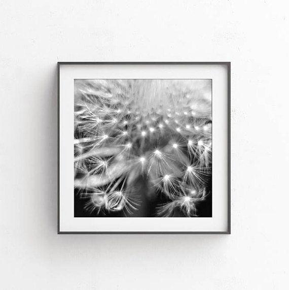 Dandelion art Black and white wall decor fine art