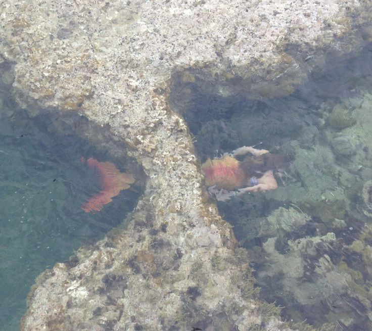 Mermaid in the rock pool, Fiona Therese Photography