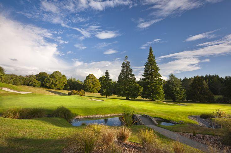 12th green, Wairakei Golf + Sanctuary