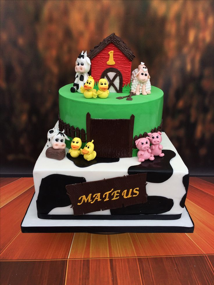 Farm Cake. 1st Birthday.