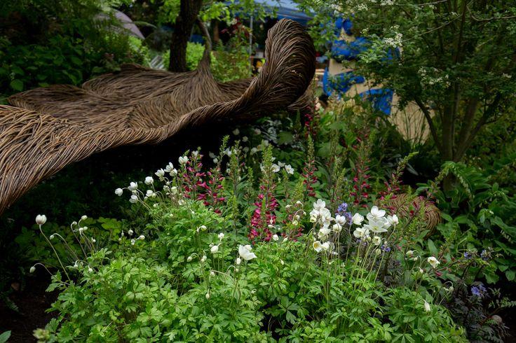 The garden is taking shape #BreastCancerHavenGarden