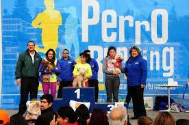 premiaciones carreras de perros - Buscar con Google