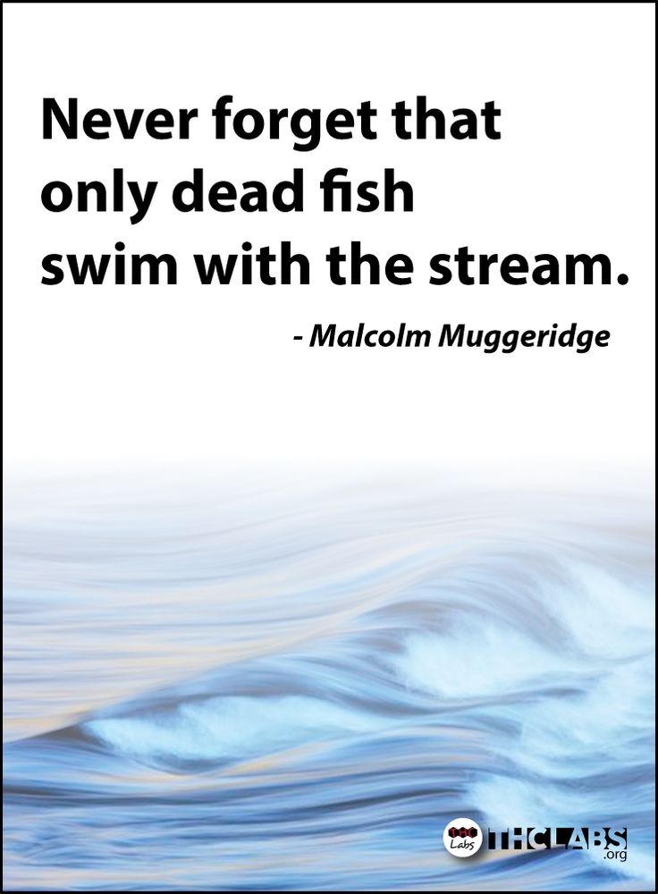 Malcolm Muggeridge. During World War II, he worked for the British government as a soldier and a spy...