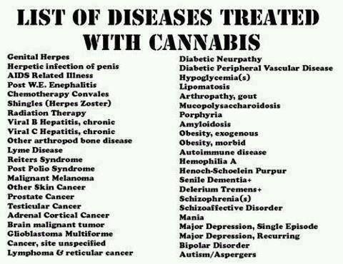 Diseases Treated With Cannabis Medical Marijuana