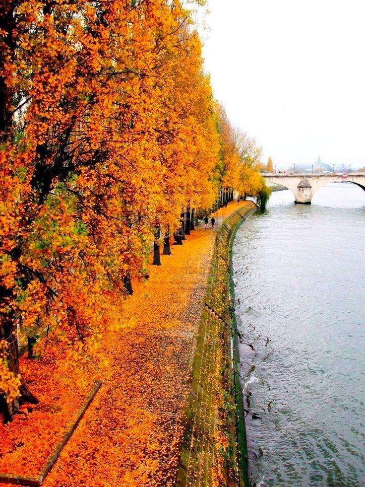 Seine in Paris France <3