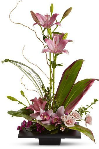 Inspirational Blooms T256-1A Looking for something different? - a floral gift that will display your imagination in full bloom? This towering topiary of Asiatic lilies, orchids and roses – artistically arranged with tropical greenery – is a unique and creative gift that will make you stand out from the crowd. by 4165flower.com