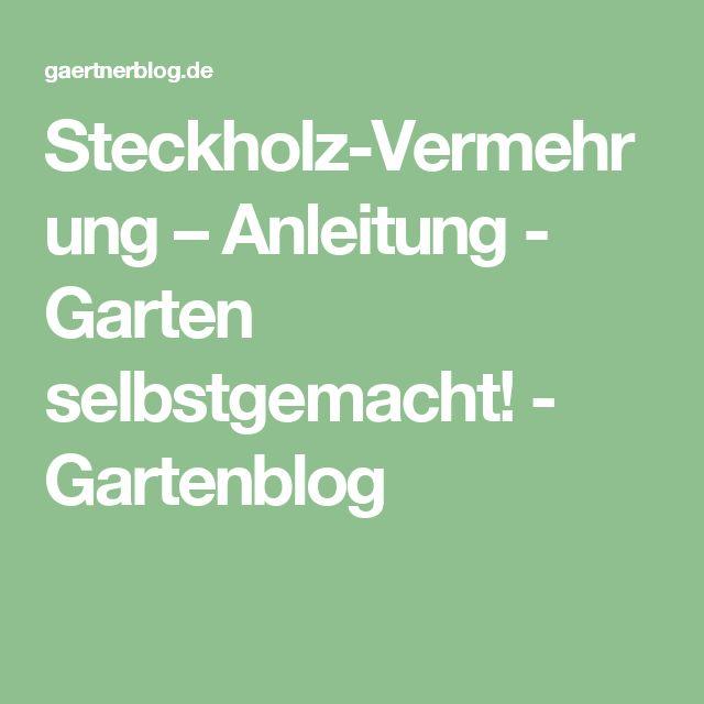 Steckholz-Vermehrung – Anleitung - Garten selbstgemacht! - Gartenblog
