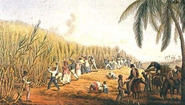 Почему кариес получил широкое распространение в XIX столетии  С древности люди страдали кариесом, но массовое распространение эта болезнь приобрела с XVIII века, когда в Новом Свете были основаны сахарные плантации. В XIX столетии сахар стали интенсивно ввозить в Европу, и кариес превратился в подлинную эпидемию.