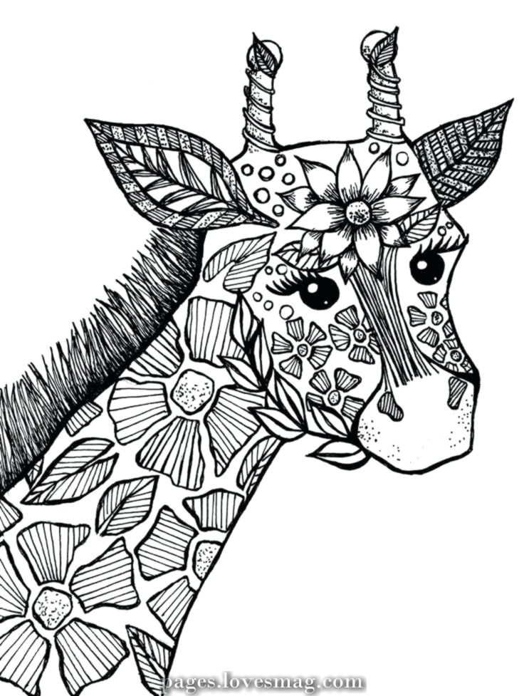 Magical Pages Coloring Animals Giraffe Coloring Pages Zoo Animal Coloring Pages Coloring Pages