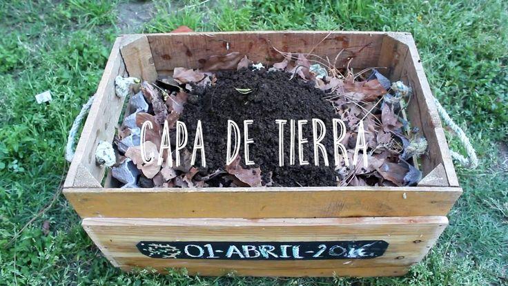 ¿CÓMO HACER COMPOSTA CASERA? / CLICK