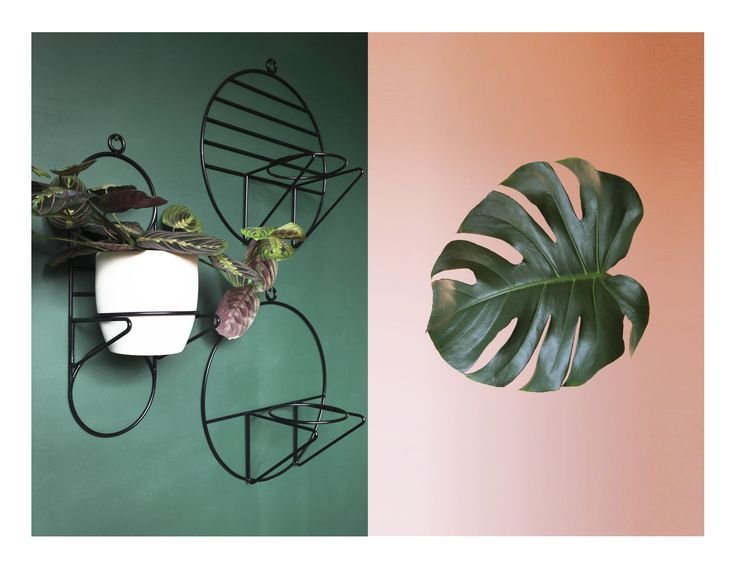 NABU, LUNO & SOL hanging plant stand | COSMO collection | BUJNIE | Beautiful and functional plant stands. #plants #plantstand #hangingplantstand #plantsarefriends #cosmo #bujnie #hanging #jungle #botanical #floral #design #product