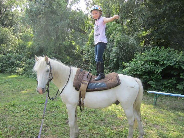 Ponyfreizeit, Reiterfreizeit, Reiterferien für Kinder Frankfurt Herbst 2013