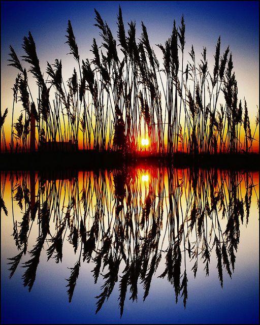 #sunset #reflection