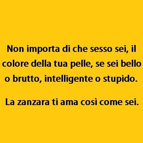 Esattamente. (By @chimera974) #tmlplanet #ragazzi #ragazze #animali #zanzare