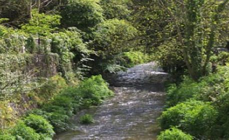 River Camel Camelford in North Cornwall.